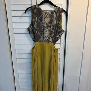 Reptile + Yellow Dress